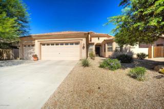 10510 E Posada Avenue  , Mesa, AZ 85212 (MLS #5175366) :: The Carin Nguyen Team