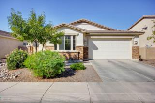 1136 E Nickleback Street  , San Tan Valley, AZ 85143 (MLS #5176302) :: Carrington Real Estate Services