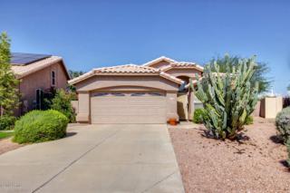 3968 E Stanford Avenue  , Gilbert, AZ 85234 (MLS #5176973) :: Morrison Residential LLC