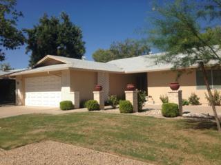 12814 W Prospect Drive  , Sun City West, AZ 85375 (MLS #5179374) :: Morrison Residential LLC