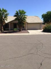 901 S Vine Street  0, Chandler, AZ 85225 (MLS #5183816) :: Carrington Real Estate Services
