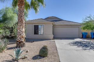 329 E Vogel Avenue  , Phoenix, AZ 85020 (MLS #5184912) :: The Daniel Montez Real Estate Group