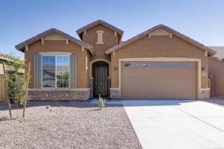 35005 N Open Range Drive  , Queen Creek, AZ 85142 (MLS #5188288) :: West USA Realty Revelation