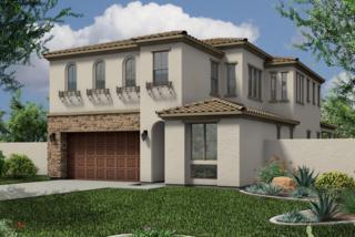 2327 W Duane Lane  , Phoenix, AZ 85085 (MLS #5188329) :: Arizona Best Real Estate