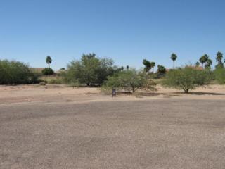 14420 S Rory Calhoun Drive  , Arizona City, AZ 85123 (MLS #5188570) :: Carrington Real Estate Services