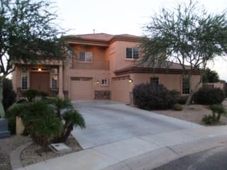 980 E Cherrywood Place  , Chandler, AZ 85249 (MLS #5188997) :: West USA Realty Revelation