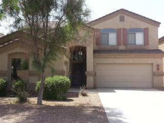 18976 N San Juan Street  , Maricopa, AZ 85138 (MLS #5189316) :: West USA Realty Revelation