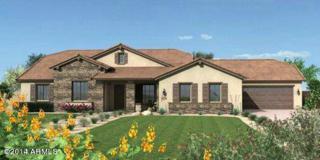 21949 E Pickett Court  , Queen Creek, AZ 85142 (MLS #5189793) :: West USA Realty Revelation