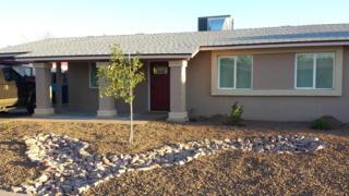 1111 W Angela Drive  , Phoenix, AZ 85023 (MLS #5190058) :: Morrison Residential LLC