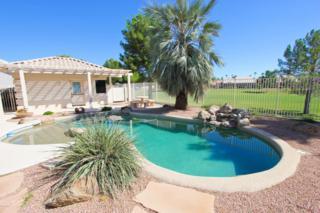471 W Elmwood Place  , Sun Lakes, AZ 85248 (MLS #5190089) :: West USA Realty Revelation