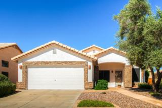 2108 E Patrick Lane  , Phoenix, AZ 85024 (MLS #5190125) :: Arizona Best Real Estate