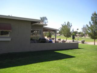 10228 E Michigan Avenue  , Sun Lakes, AZ 85248 (MLS #5190893) :: West USA Realty Revelation