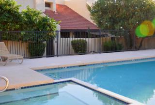 418 E Turquoise Avenue  , Phoenix, AZ 85020 (MLS #5191739) :: Arizona Best Real Estate
