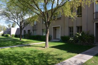 5907 E Thomas Road  , Scottsdale, AZ 85251 (MLS #5193002) :: The Daniel Montez Real Estate Group