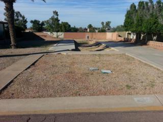 4234 E Fremont Street  , Phoenix, AZ 85042 (MLS #5193023) :: The Daniel Montez Real Estate Group