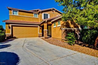 42616 W Avella Drive  , Maricopa, AZ 85138 (MLS #5193163) :: West USA Realty Revelation