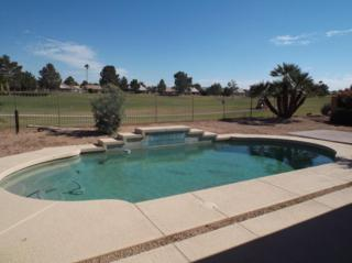 24801 S Ribbonwood Drive  , Sun Lakes, AZ 85248 (MLS #5193303) :: West USA Realty Revelation