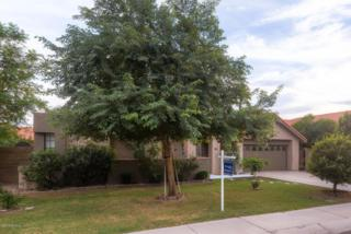1955 E Vinedo Lane  , Tempe, AZ 85284 (MLS #5193650) :: Arizona Best Real Estate