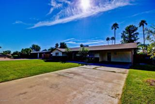 2243 E Adobe Street  , Mesa, AZ 85213 (MLS #5193698) :: West USA Realty Revelation