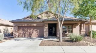 2518 W Mark Lane  , Phoenix, AZ 85085 (MLS #5193780) :: Arizona Best Real Estate