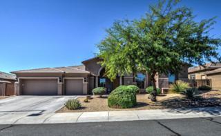 6126 N 132ND Avenue  , Litchfield Park, AZ 85340 (MLS #5195998) :: Keller Williams Legacy One Realty