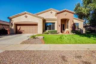 4304 E Reins Road  , Gilbert, AZ 85297 (MLS #5196655) :: Carrington Real Estate Services