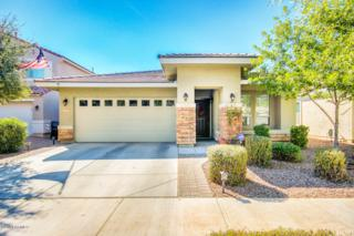 4223 E Sandy Way  , Gilbert, AZ 85297 (MLS #5198248) :: Carrington Real Estate Services