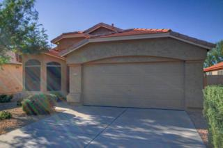 4315 E Lone Cactus Drive  , Phoenix, AZ 85050 (MLS #5198618) :: Morrison Residential LLC