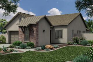 2339 W Duane Lane  , Phoenix, AZ 85085 (MLS #5200820) :: Arizona Best Real Estate