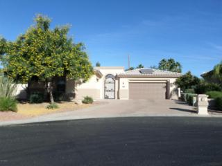2866 N 162ND Lane  , Goodyear, AZ 85395 (MLS #5201649) :: Arizona Best Real Estate