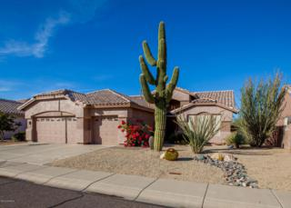 4146 W Ross Avenue  , Glendale, AZ 85308 (MLS #5203358) :: Quantum of Arizona, REALTORS