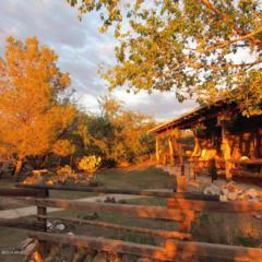 7101 E White Pacheco Street  , Willcox, AZ 85643 (MLS #5203540) :: West USA Realty Revelation