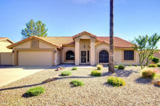 19803 N 95TH Avenue  , Peoria, AZ 85382 (MLS #5203579) :: Morrison Residential LLC