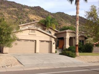 21217 N 52ND Avenue  , Glendale, AZ 85308 (MLS #5203698) :: Keller Williams Legacy One Realty