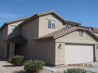 22674 W Adams Drive  , Buckeye, AZ 85326 (MLS #5203719) :: Arizona Best Real Estate