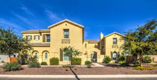 4516 W Coplen Farms Road  , Laveen, AZ 85339 (MLS #5203769) :: West USA Realty Revelation