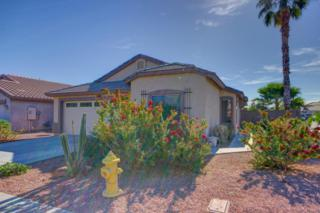 16247 W Young Street  , Surprise, AZ 85374 (MLS #5204330) :: Morrison Residential LLC