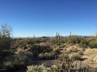 27436 N 97TH Place  , Scottsdale, AZ 85262 (MLS #5204434) :: Quantum of Arizona, REALTORS