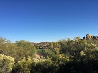 10641 E Blue Sky Drive  , Scottsdale, AZ 85262 (MLS #5204449) :: The Carin Nguyen Team