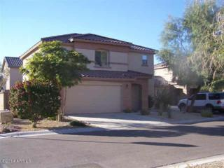 9412 W Terri Lee Drive  , Phoenix, AZ 85037 (MLS #5204628) :: Keller Williams Legacy One Realty