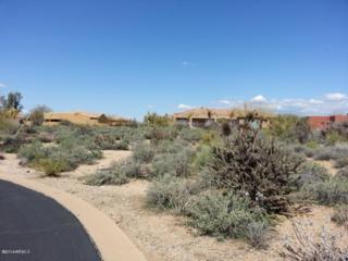 8540 E High Point Drive  , Scottsdale, AZ 85266 (MLS #5204648) :: Arizona Best Real Estate