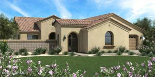22789 S 220TH Street  , Queen Creek, AZ 85142 (MLS #5204723) :: West USA Realty Revelation