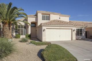 6168 W Megan Street  , Chandler, AZ 85226 (MLS #5204834) :: West USA Realty Revelation
