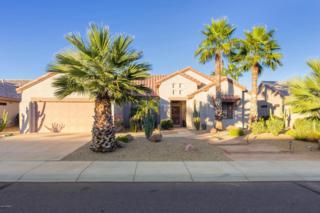 16290 W Desert Winds Drive  , Surprise, AZ 85374 (MLS #5204901) :: Morrison Residential LLC