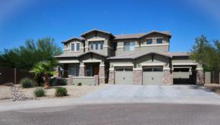 15517 W Meadowbrook Avenue  , Goodyear, AZ 85395 (MLS #5204915) :: Carrington Real Estate Services