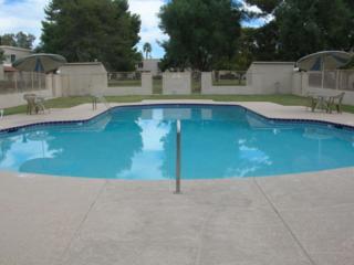 5859 N 83RD Street  , Scottsdale, AZ 85250 (MLS #5204932) :: Carrington Real Estate Services