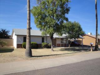 13010 N 18TH Drive  , Phoenix, AZ 85029 (MLS #5204944) :: Carrington Real Estate Services
