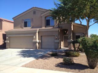 19095 N Leland Road  , Maricopa, AZ 85138 (MLS #5204980) :: West USA Realty Revelation