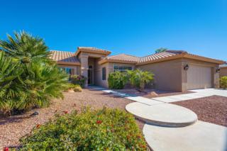 24027 S Stoney Path Drive  , Sun Lakes, AZ 85248 (MLS #5205022) :: West USA Realty Revelation