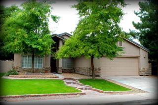 5340 E Fountain Street  , Mesa, AZ 85205 (MLS #5212179) :: Quantum of Arizona, REALTORS